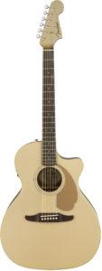 Fender Guitare acoustique Newporter player